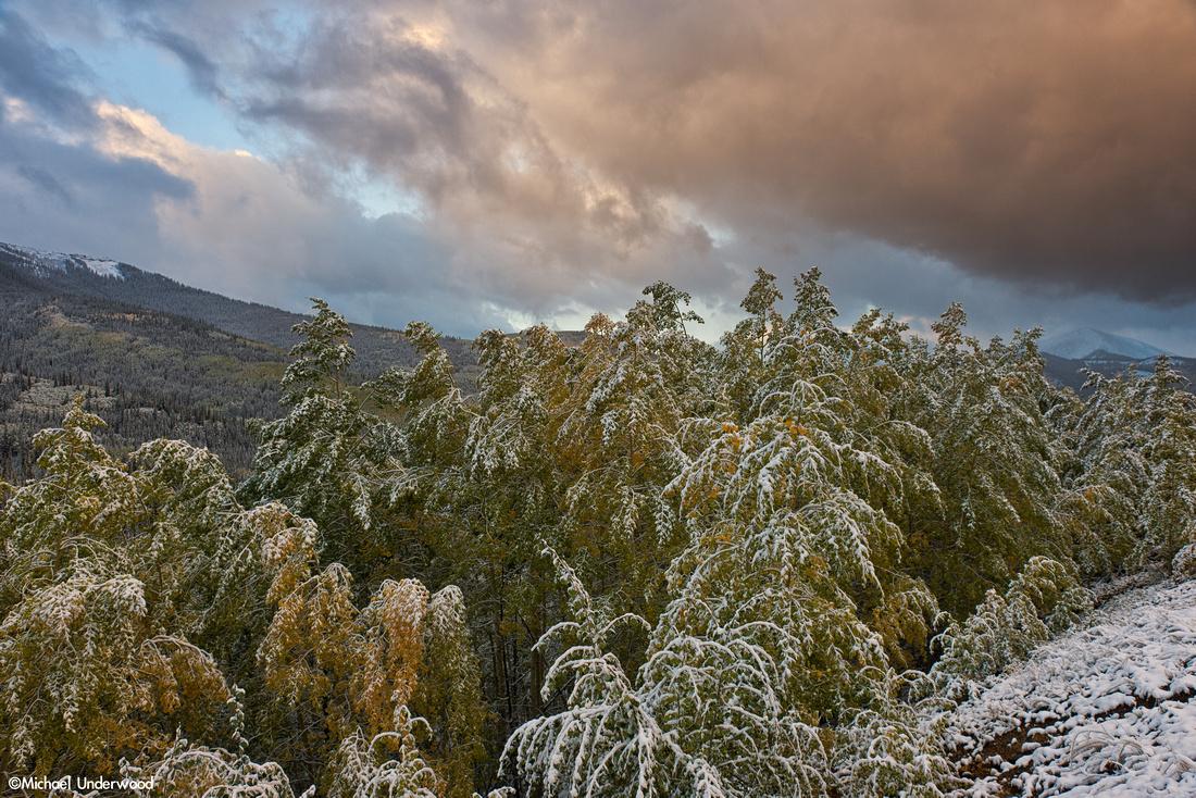 Autumn Sunrise in the Gunnison National Forest