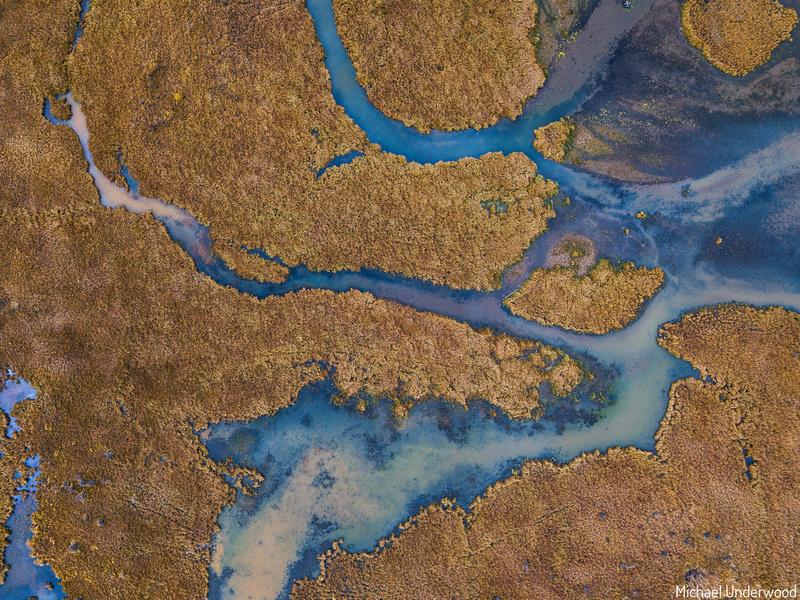 Cristobal Wetlands