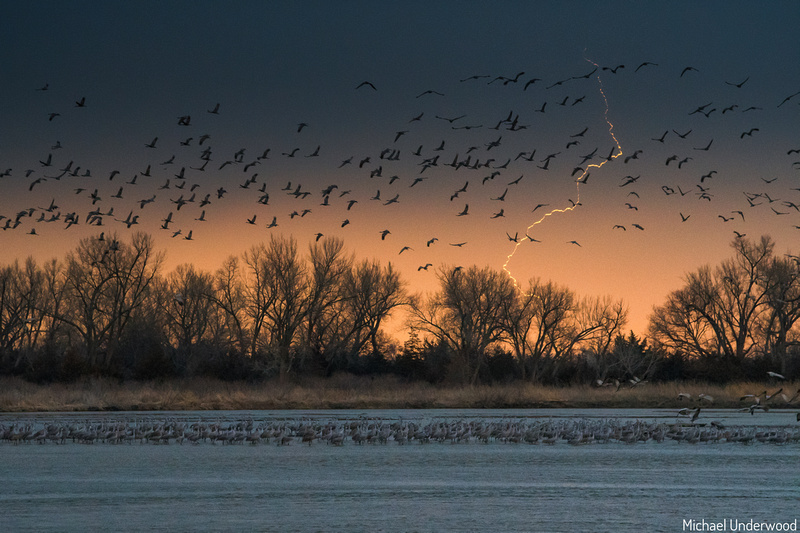 Lightning and Cranes on the Platte