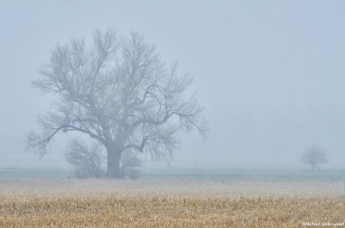 Nebraska Ice Storm